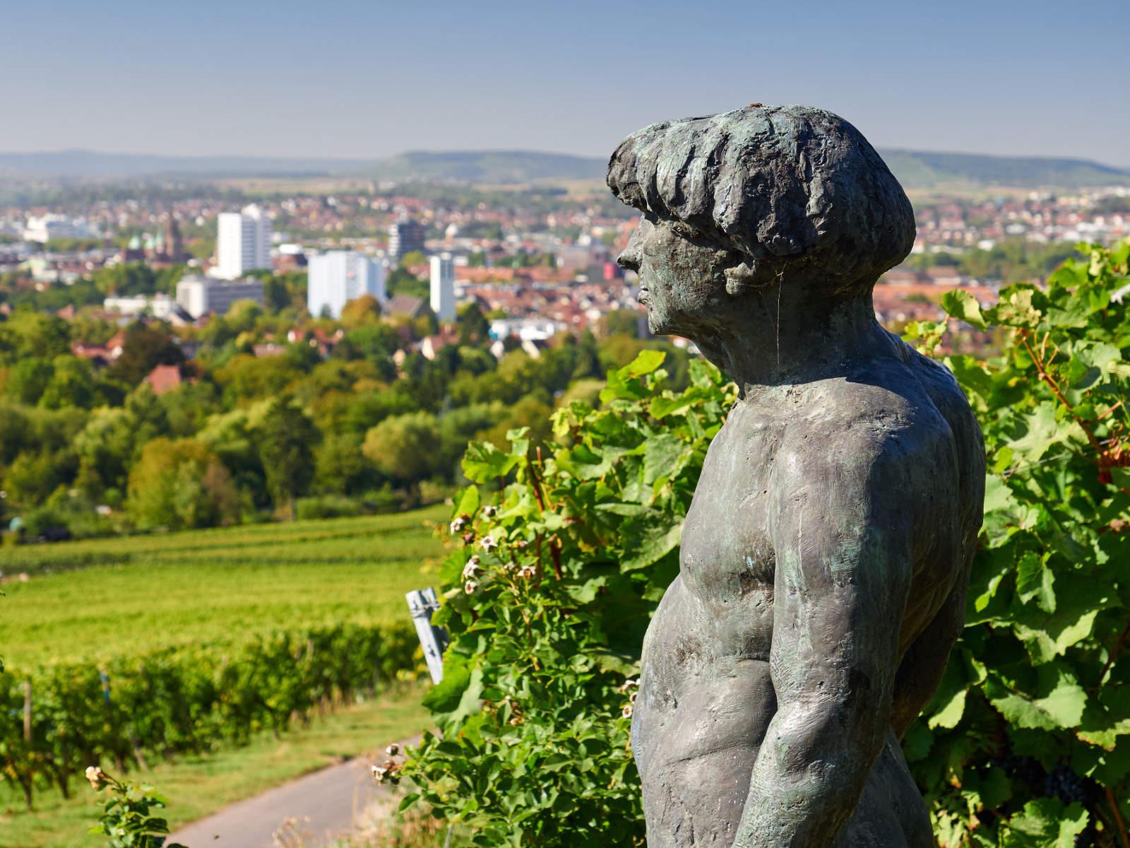 Stadtansicht Heilbronn - Rechtsanwälte für Insolvenzrecht Fichter & Kollegen